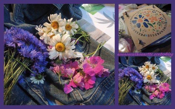 Fleurs fra ches futures fleurs s ch es centerblog for Fleurs fraiches